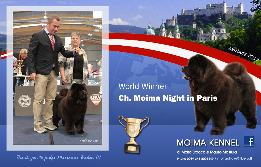 World Winner 2012 - Multi Ch. Moima Night in Paris